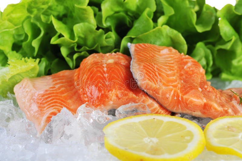 Red fish on ice. Pieces of red fish and lettuce on ice royalty free stock photos