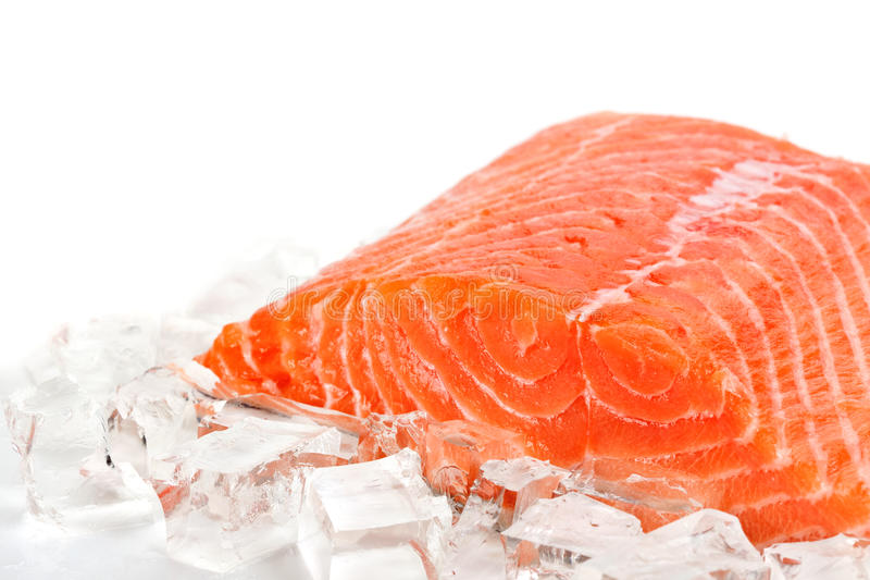 Red fish with ice slices. On a white background stock images