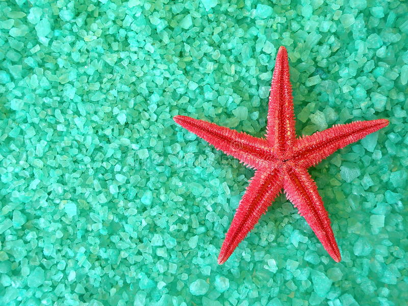 Red fish star and salt stock photography