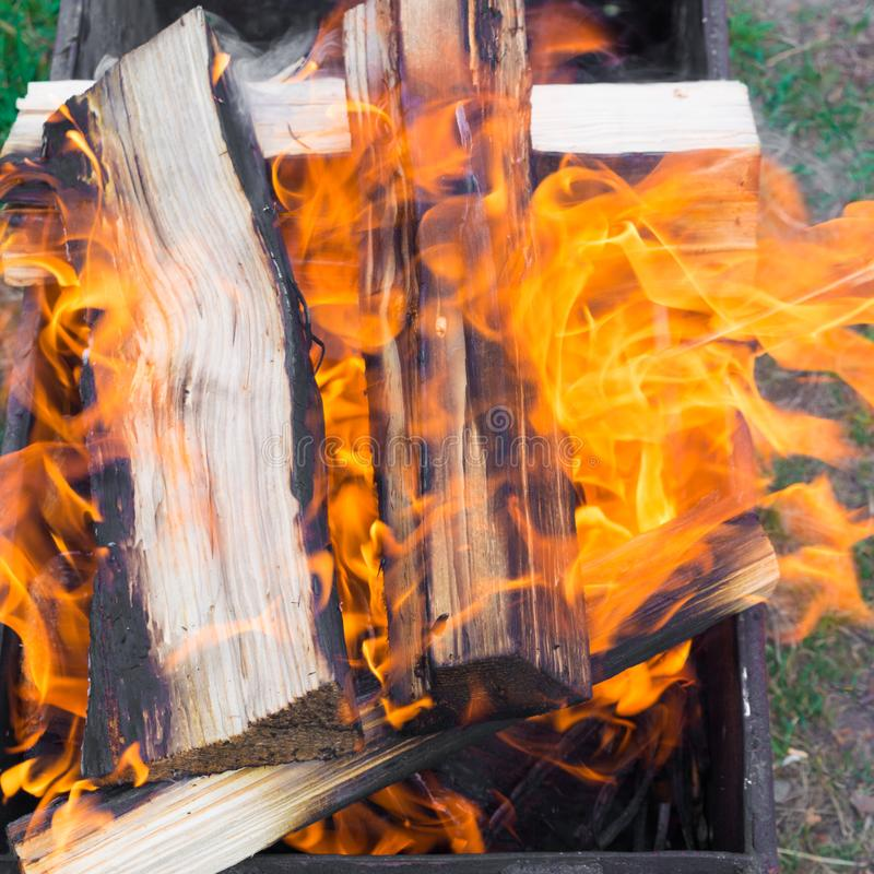 Red flame from a cut of a tree. Firewood burning in a brazier. Flames of fire preparing for cooking kebabs royalty free stock photography