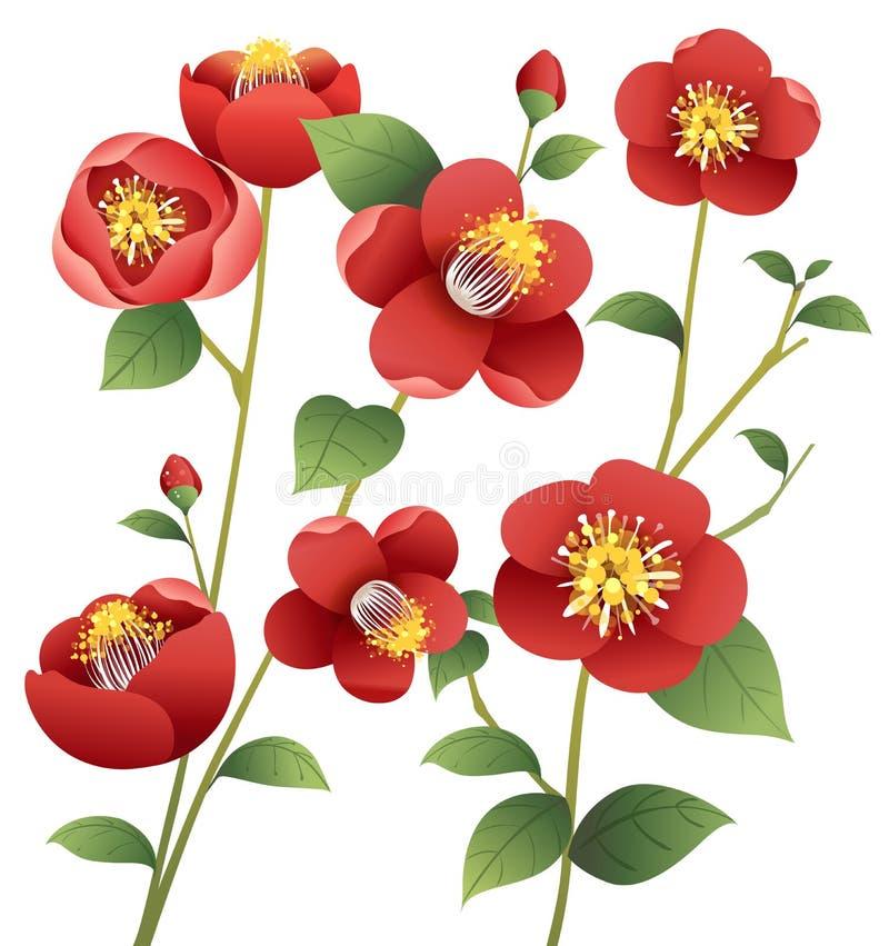 Red flower stock illustration