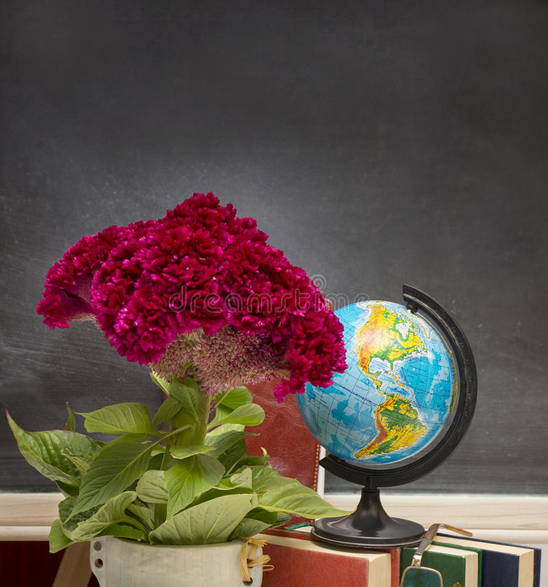 Red flower and a globe . Teacher Day. royalty free stock images