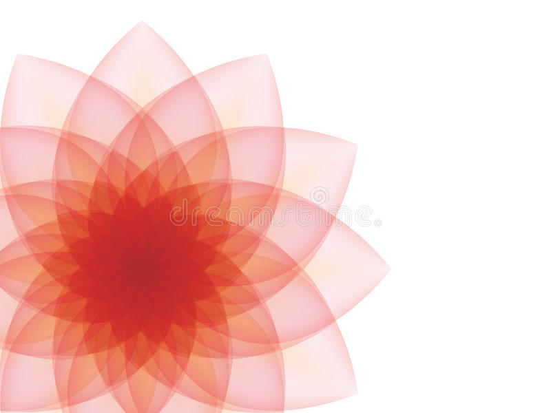 Red flower on a gray background. stock photo
