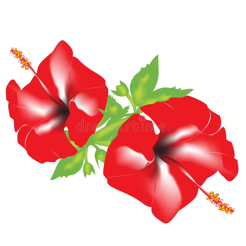 Red flowers stock illustration