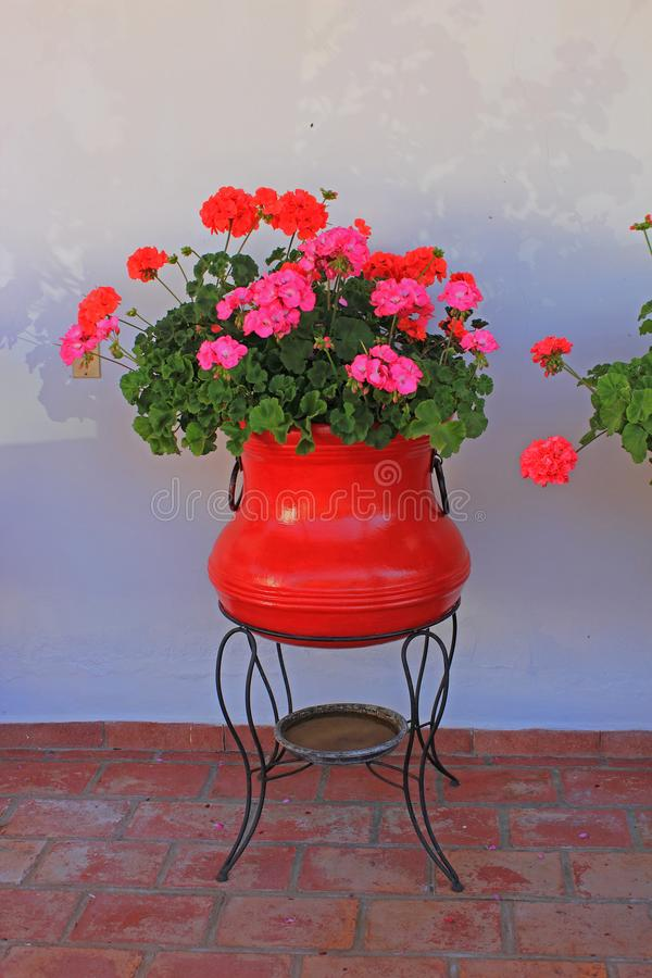 Red flowers in beautiful pot on terrace. Beautiful style pot with red flowers on the terrace of a house. White wall in background and brown brick floor in stock photos