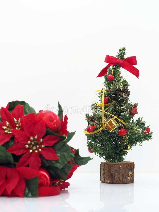 Christmas composition,flowers and christmas tree stock images