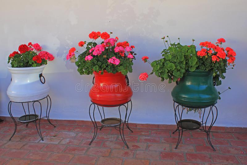 Red flowers in colorful pots on terrace. Beautiful style pots with red flowers on the terrace of a house. White wall in background and brown brick floor in royalty free stock photography
