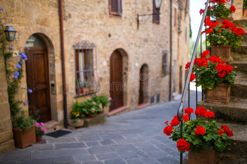 Download Red Flowers In Tuscany, Italy Stock Photo - Image of gravel, dusk: 44776228