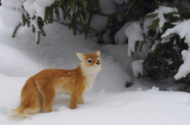 Download Red Fox Royalty Free Stock Photo - Image: 30276275
