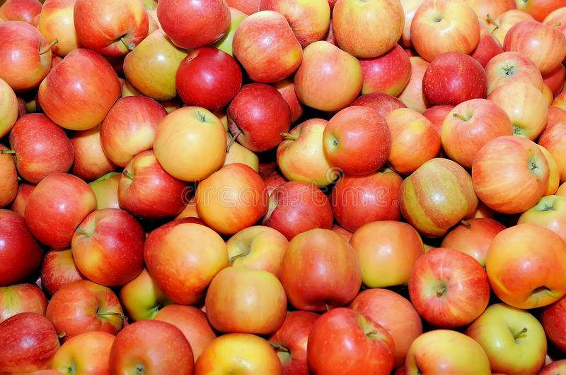 Red fresh apples in a pile as a background stock photo