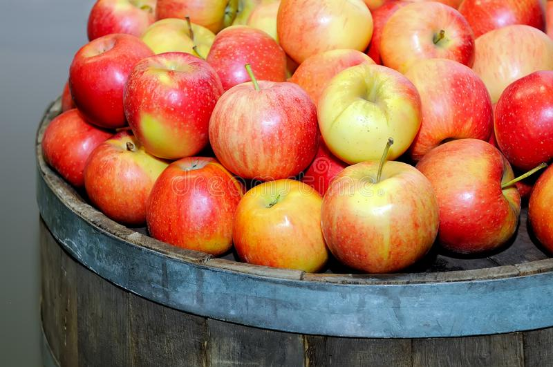 Red fresh apples in a pile on a round wooden barrel.  stock photo