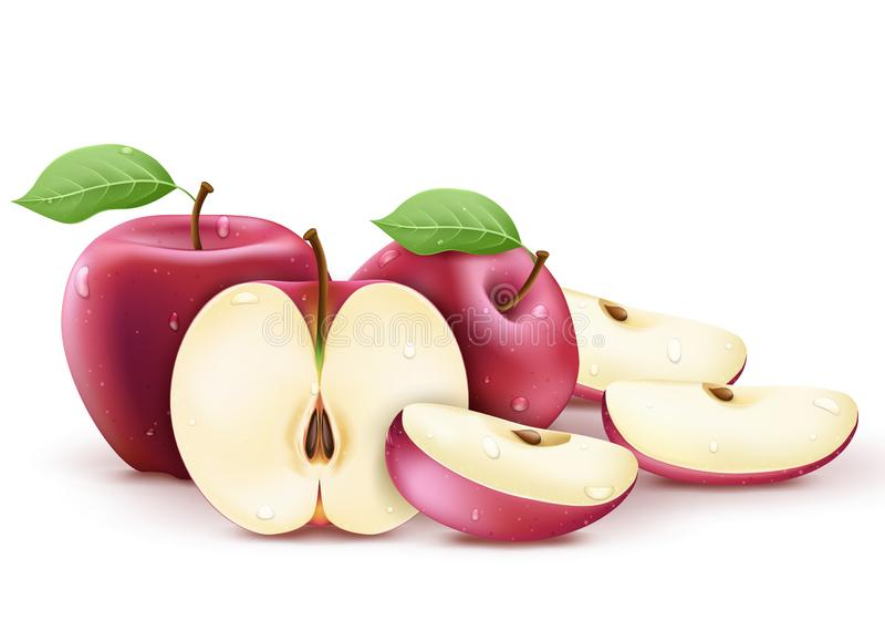 Red Fresh Apples Whole, Half and Sliced Wet and with Water Splash 3D Realistic vector illustration