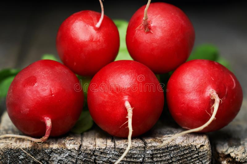 Red fresh radish on the edge of old wooden table stock photo