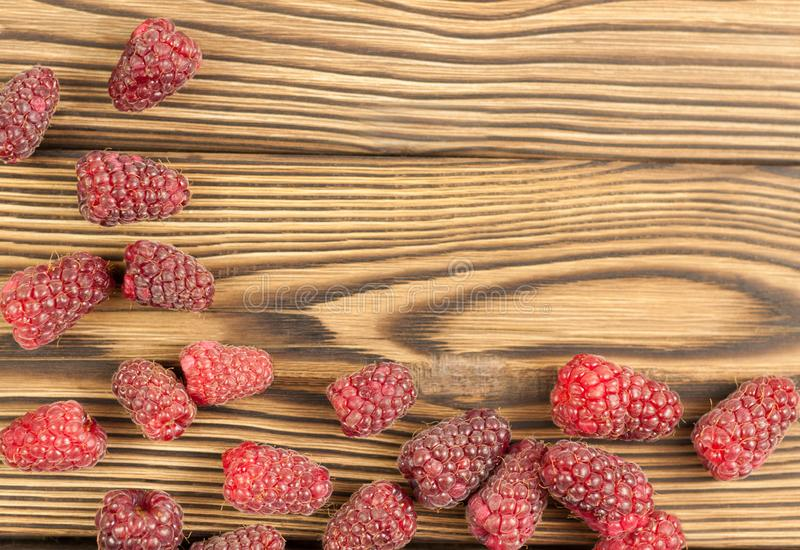 Red fresh raspberries royalty free stock photography