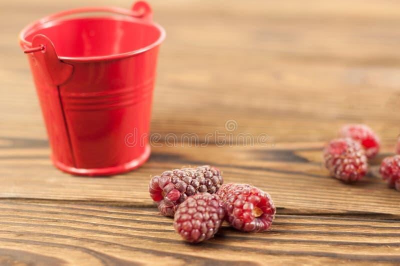 Red fresh raspberries stock photos