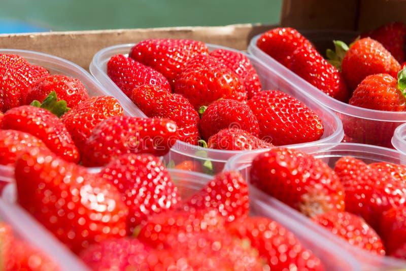 Red fresh strawberry stock photos
