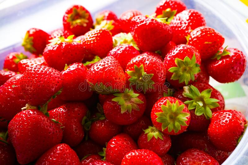 Red fresh and tasty strawberries in a transparent bowl stock images