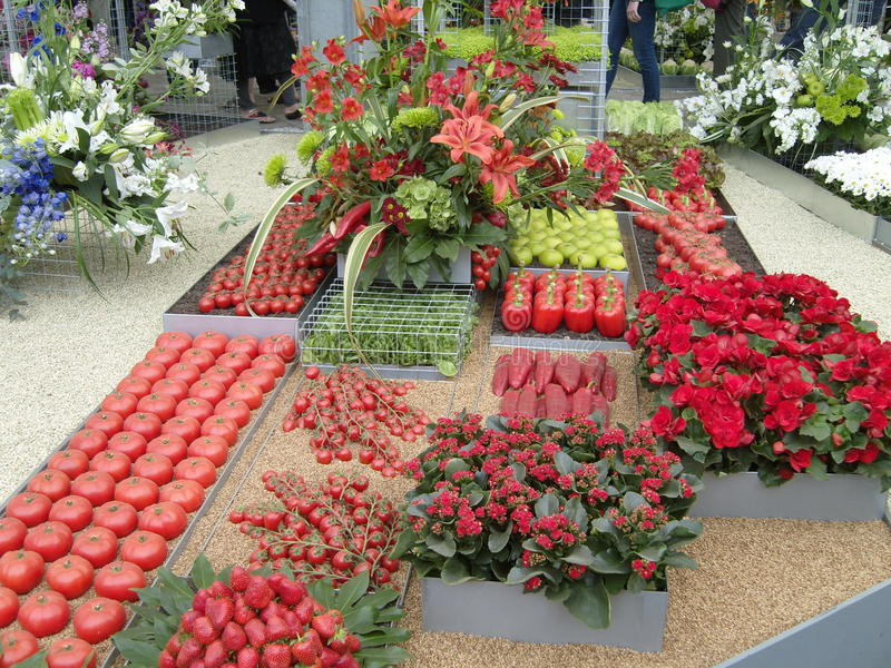 Download Red Fruit And Vegetable Display Stock Photo - Image: 36491806