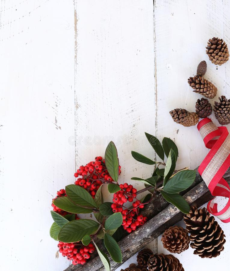 Red Fruits and Brown Pine Cones on White Wooden Surface stock photos