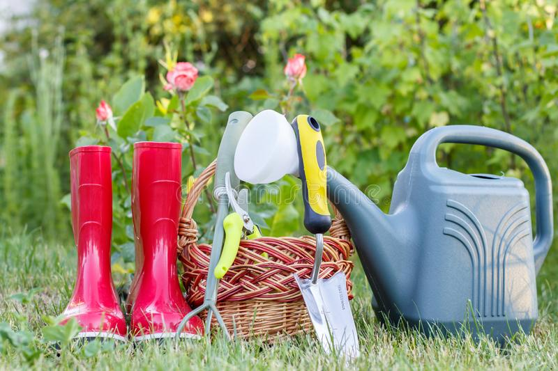 Red garden rubber boots, small rake, pruner, wicker basket, trow stock photography