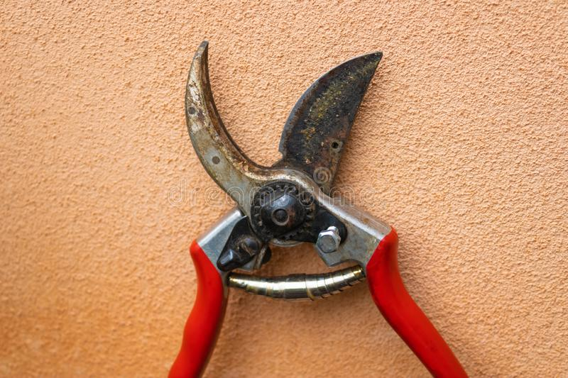 Red garden shears pruner closeup with pink wall on the background - Image stock images