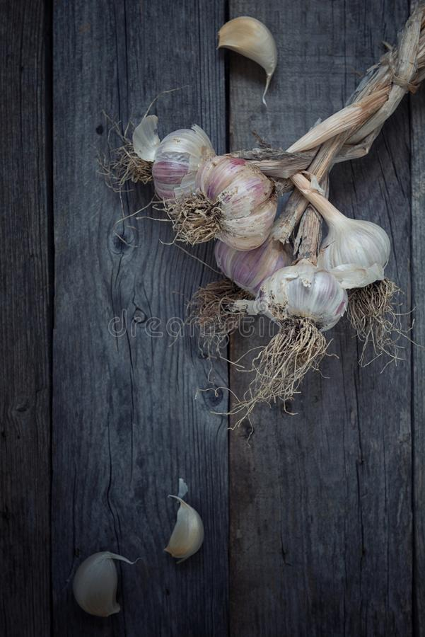 Red garlic on rustic wood table stock photo