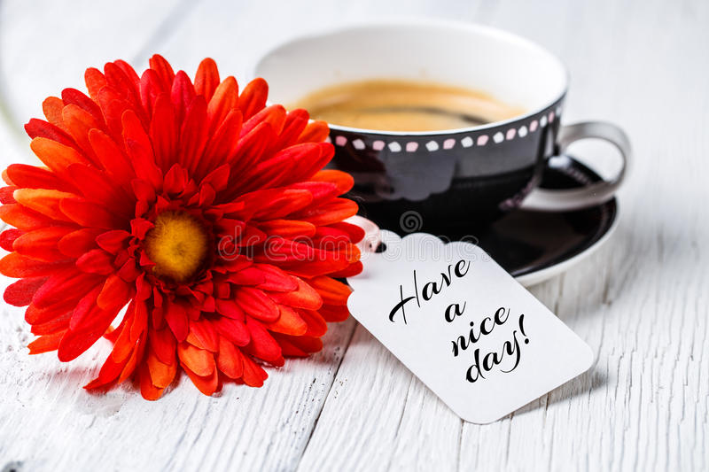 Red gerbera, coffee and postcard stock images