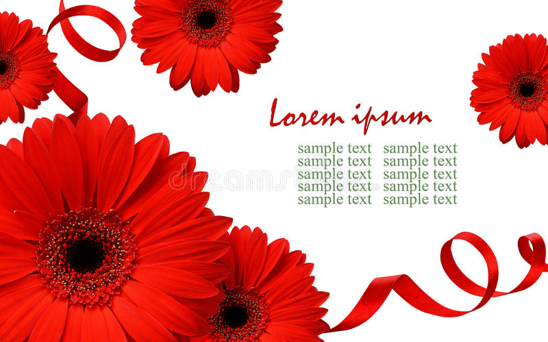 Download Red Gerbera Flowers And Silk Ribbons Stock Photo - Image: 83712267