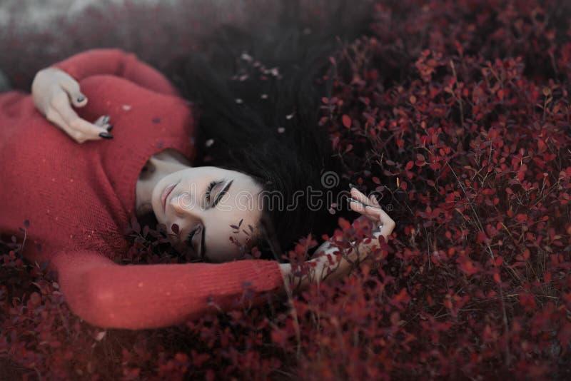Red, Girl, Petal, Computer Wallpaper royalty free stock photos