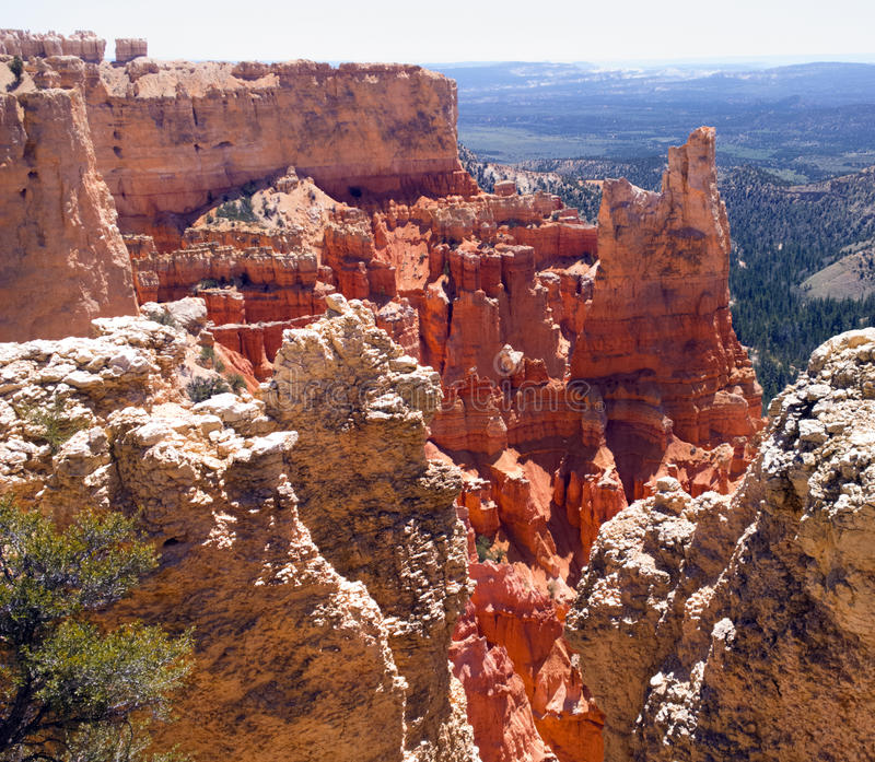 Red Glow. Glowing red rock formations at Paria View, Bryce Canyon National Park, Utah. Elevation: 8175 feet stock photos