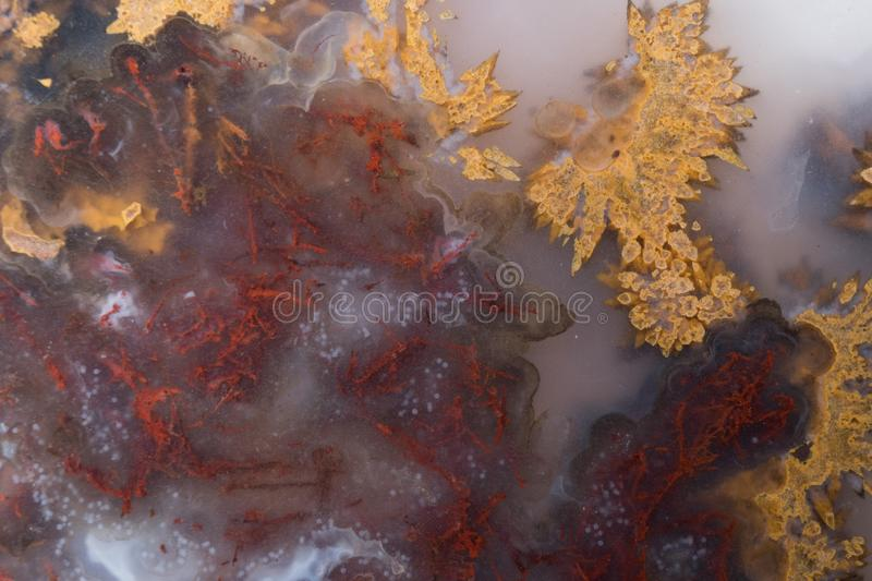 Red and Golden Agate Macro details. Agates and Jaspers of all kinds can be found in the desert of southwest New Mexico usa abstract background close-up stock images