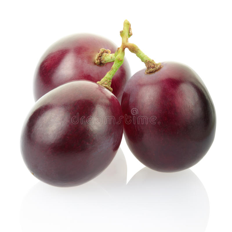 Free Red Grape Stock Photo - 22376620