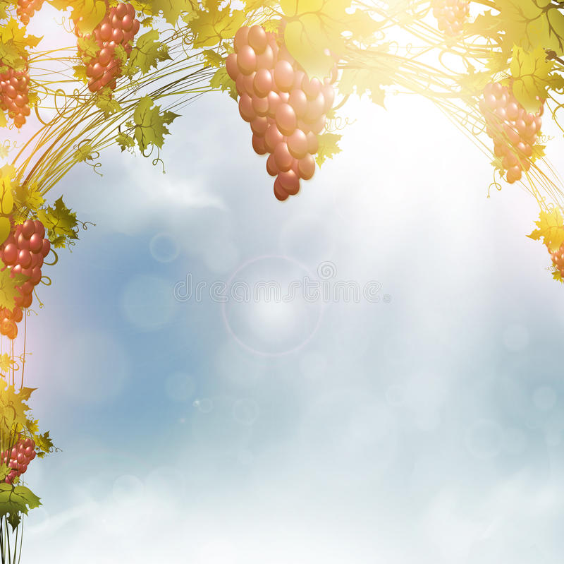 Download Red grape stock vector. Image of fruit, heaven, environment - 23595670