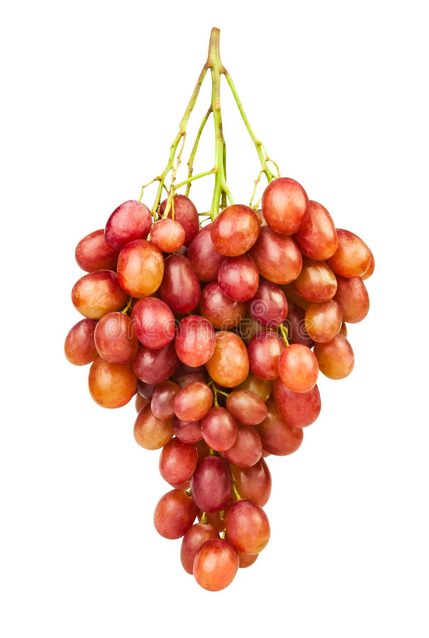 Red grape. On white background royalty free stock photos