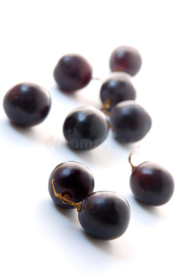 Download Red grape stock photo. Image of life, fresh, drink, background - 28081120