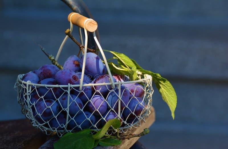 Red Grape Fruits On Metal Basket Free Public Domain Cc0 Image