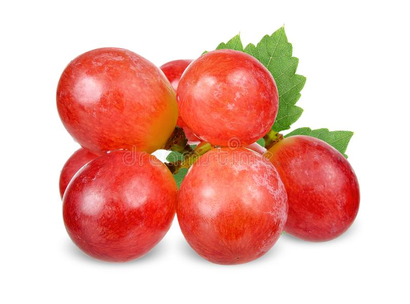 Red grape isolated on white clipping path royalty free stock image