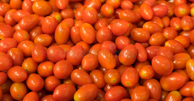 Red grape tomato background, two clipping paths included royalty free stock image