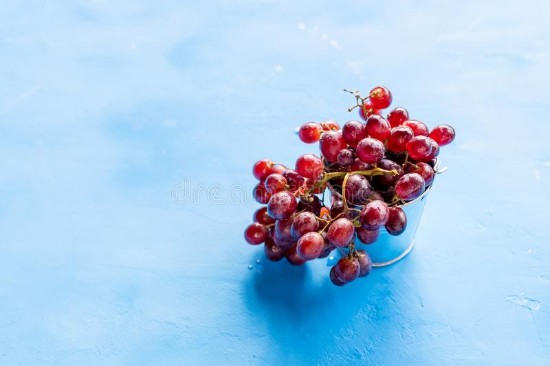 Red grape with water drops, closeup,  on blue background.fresh red grapes. Harvest time. Summer fresh berries stock photography