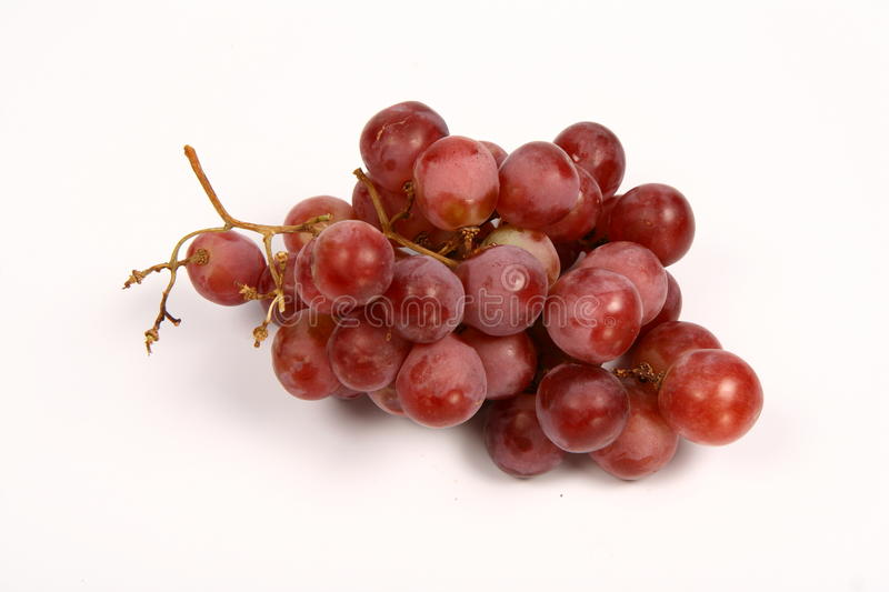 Download Red grapes stock image. Image of fruit, farming, white - 14088227