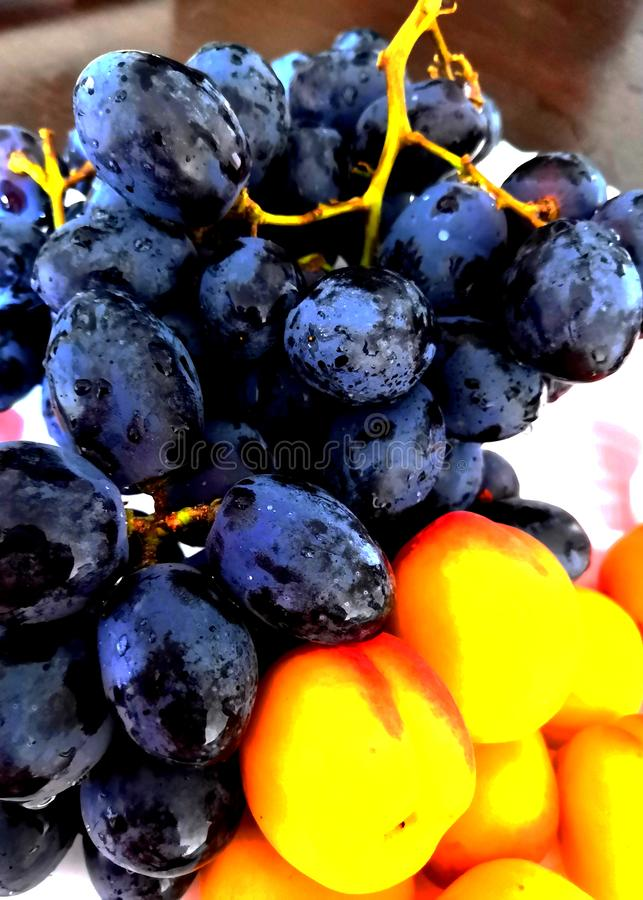 Red grapes and apricots. Delicious fruits on a plate with grapes, apricots. royalty free stock photo