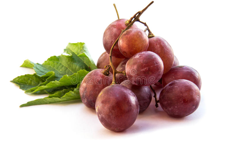 Red grapes berry stock photos