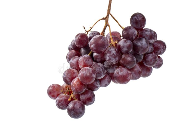 Red Grapes Bunch, Isolated royalty free stock images