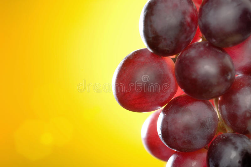 Red grapes close-up royalty free stock photos