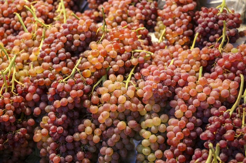 Red grapes,healthy fruits on the counter of the market in Qazvin, north-west Iran stock photo