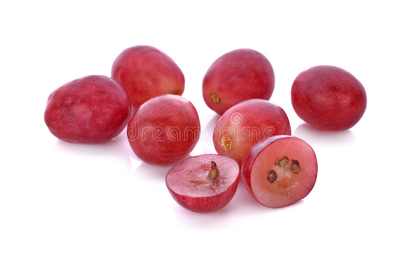 Red grapes isolated on white background stock photography
