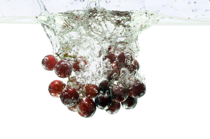 Download Red Grapes Splashing Into Water Stock Photo - Image: 8381588