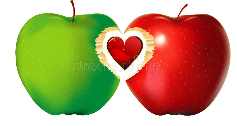Red and green apple heart. Red and green apples union with heart illustration isolated on white stock illustration