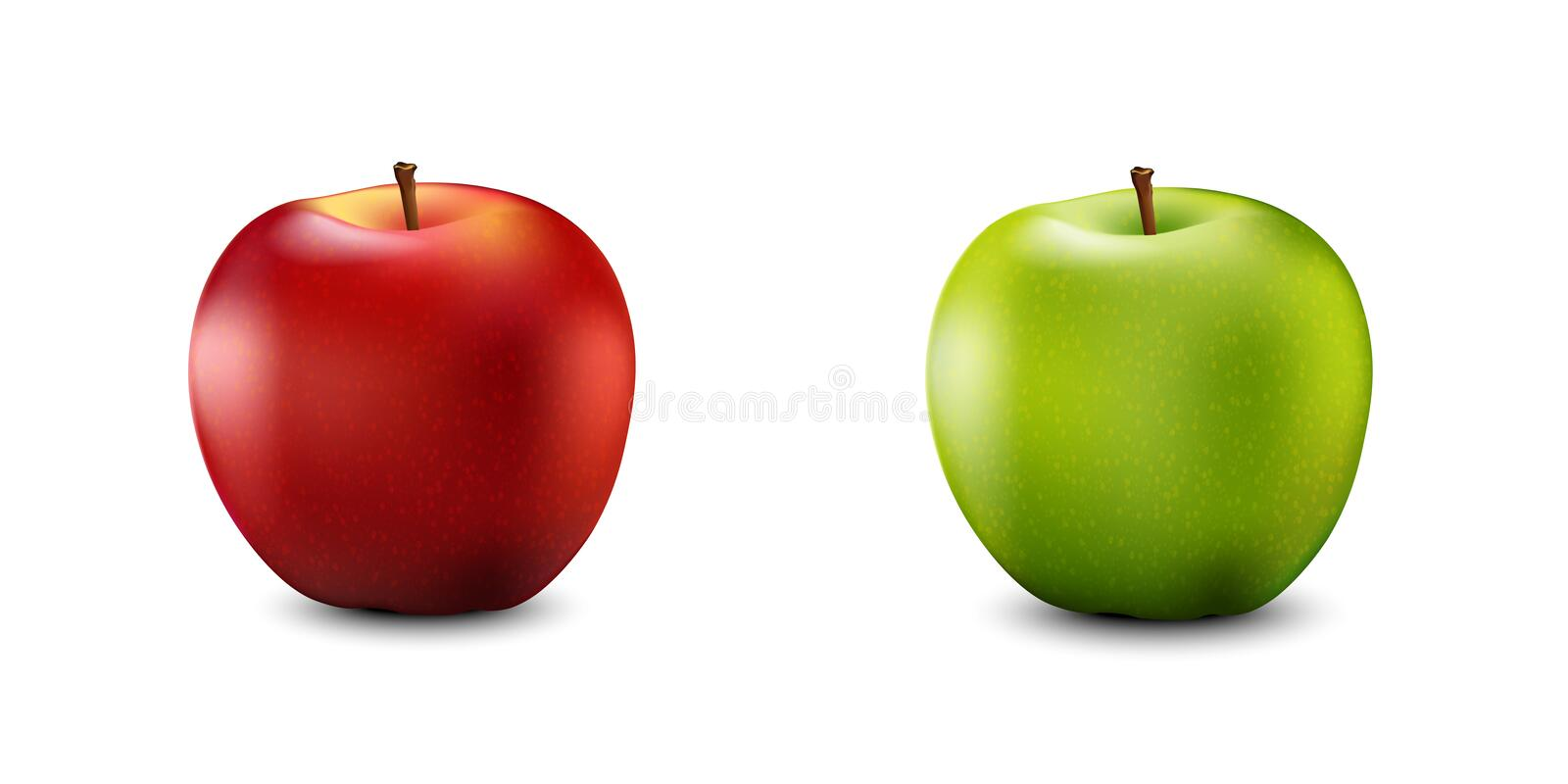 Red and Green Apple Set. Realistic 3d apples. Detailed 3d Illustration Isolated On White. Vector Illustration. royalty free illustration