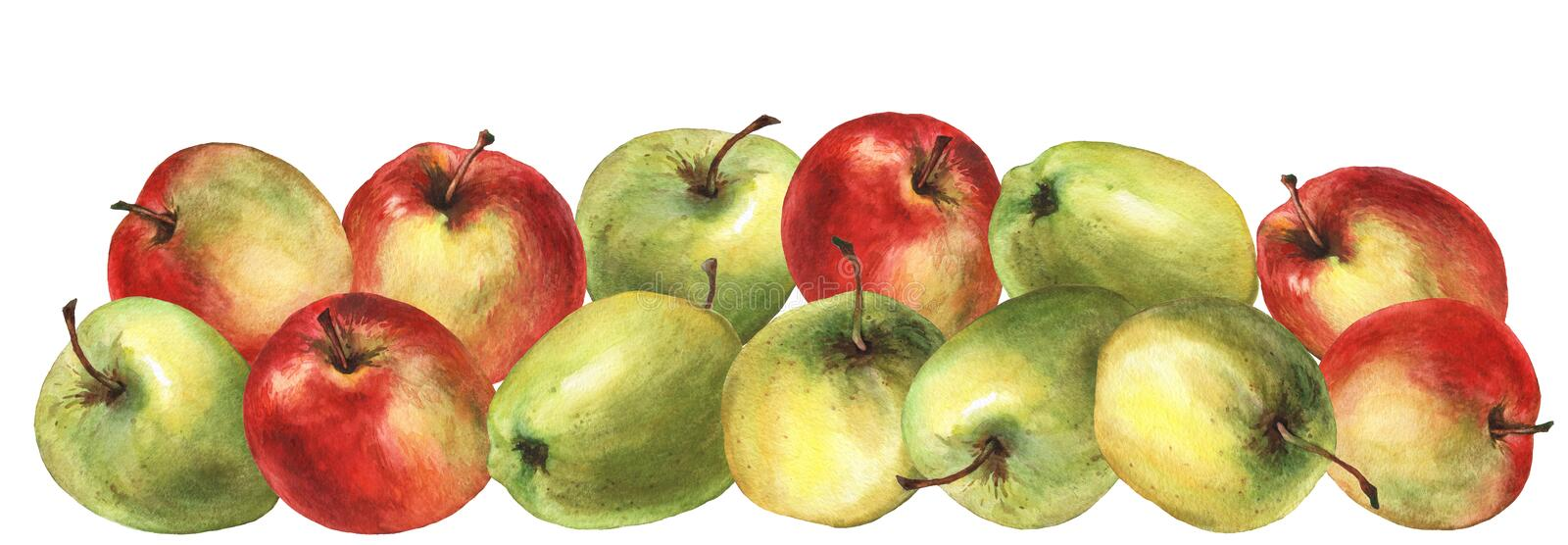 Red and green apple. Watercolor hand painting illustration stock illustration